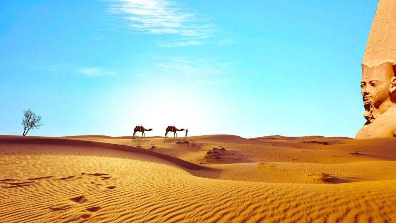 Egypt desert