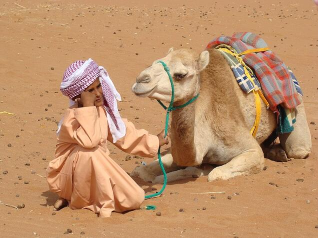 A Bedouin child from Egypt
